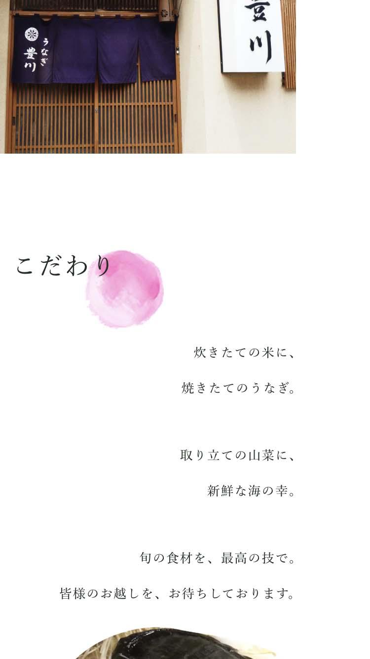 豊川のサムネイル